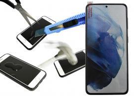 Glasbeskyttelse Samsung Galaxy S21 5G (G991B)