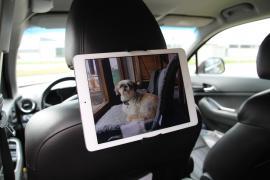 Nakkestøtteholder til iPad & Tablet